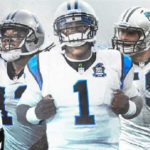 bruce-irvins-dog-mentality-is-what-panthers
