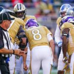 8 Vikings Participate in Pro Bowl with Heavy...