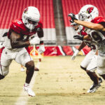 Cardinals Make Final Cuts To Get To Initial 53-Man...