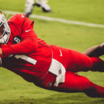 Cardinals Fight Familar Issues In Loss To Lions