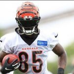 tee-higgins-focused-on-getting-stronger-this