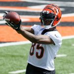 Bengals OC Brian Callahan: Tee Higgins is going to...