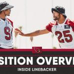 cardinals-position-overview-2021-inside
