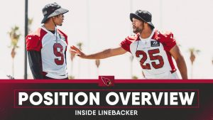 Cardinals Position Overview 2021: Inside...