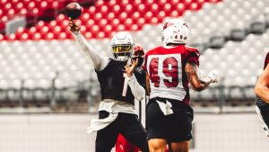 Cardinals To Have 12 Open Training Camp Practices