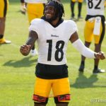 diontae-johnson-still-trying-to-get-comfortable