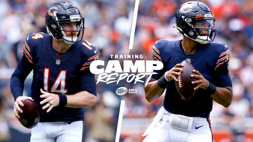 Chicago Bears announce plans for Andy Dalton,...